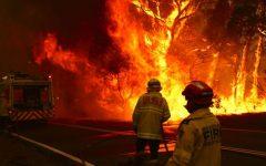Australia Bushfires Impact the Globe