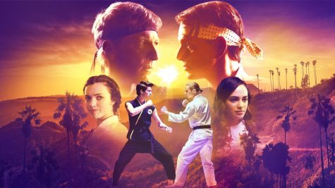 Cobra Kai: Picking up Where Karate Kid Left Off